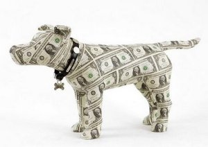 money_dog-12613