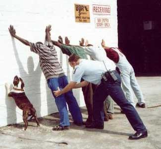 dog_arrested