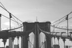 Bridge pexels-photo