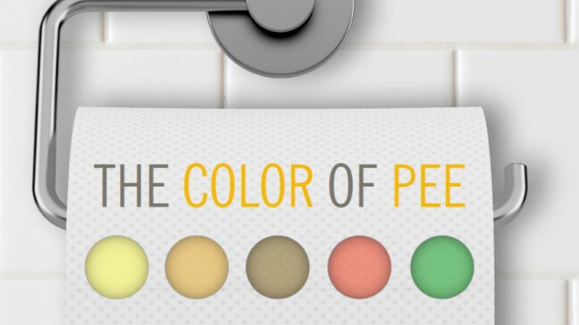 colorofpeegraphic