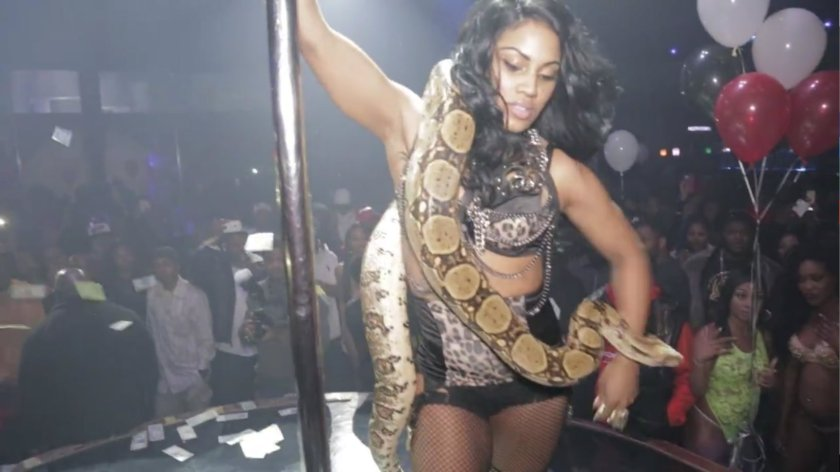 dallas-stripper-dance-with-live-snake-and-gets-an-happy-ending