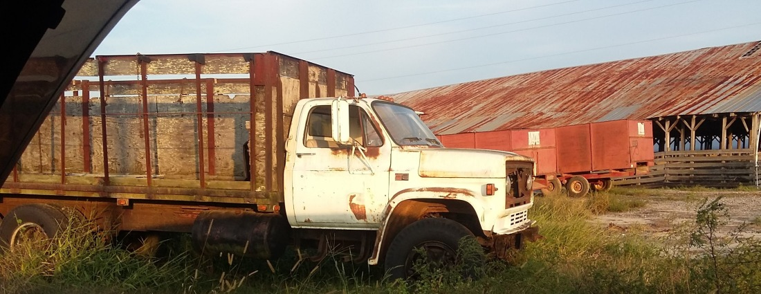 Rusted Out Truck