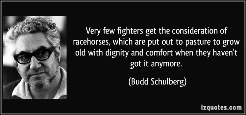 quote-very-few-fighters-get-the-consideration-of-racehorses-which-are-put-out-to-pasture-to-grow-old-budd-schulberg-164985